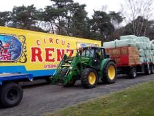 Boeren uit regio Hardenberg schieten Circus Renz te hulp: 'Dieren in nood laat je niet stikken'