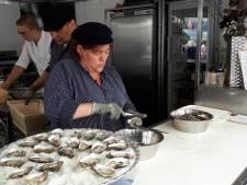 ProefMei in Bergen op Zoom houdt College Tour bij Seafood-festival