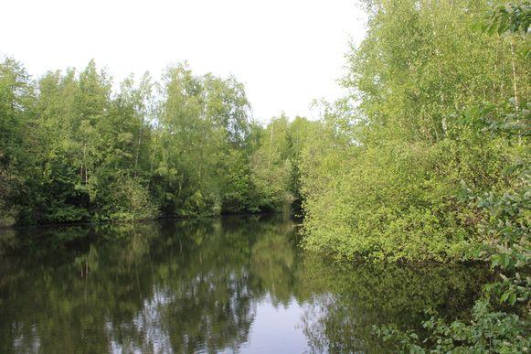 Het binnengebied met de vijver is vandaag niet zichtbaar