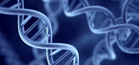 Wetenschappers ontdekken 'genetisch schaartje' waarmee virussen onschadelijk worden gemaakt