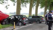 Te snelle automobilist vraagt vrijspraak na dodelijk ongeval langs gewestweg