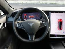 'Autopilot van Tesla herkent honden als voetgangers en wijkt uit voor eenden'