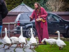 Toekomst van dierenweide bij Zonnehuis ongewis: 'Dieren gaven bewoners liefde en aandacht'