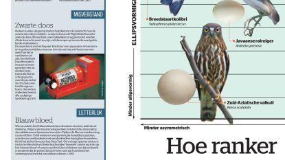 Hoe ranker de vleugels, hoe puntiger het ei