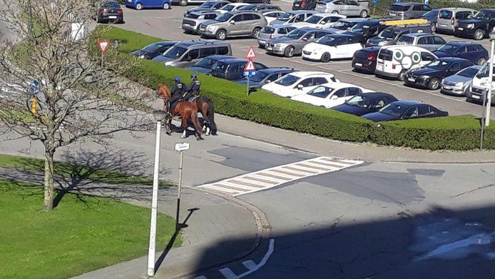 De federale cavalerie patrouilleerde het voorbije weekend in Oostende.