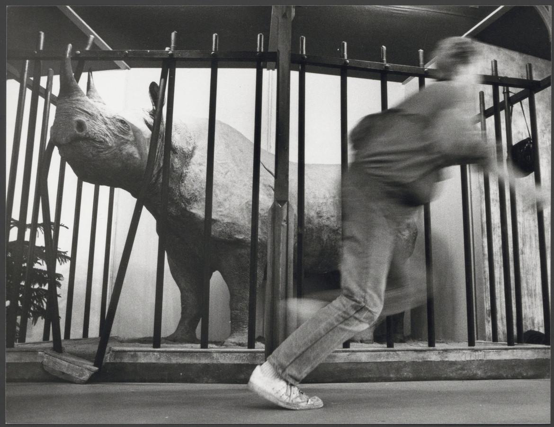 Farou werd na haar dood opgezet. Deze foto is uit 1988.