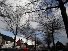 Operatie Moeraseik start op 'droeve dag voor Heesch'