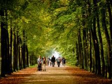 Zin om te wandelen? Dit zijn vier razend populaire routes in Twente