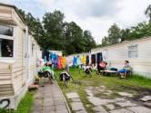 Gemeenten in het Groene Hart hebben geen zicht op buitenlandse werkkrachten: 'Uitbuiting ligt op de loer'