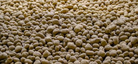 Aardappelhandel moet dokken vanwege illegaal overnachtende chauffeurs en geluidsoverlast