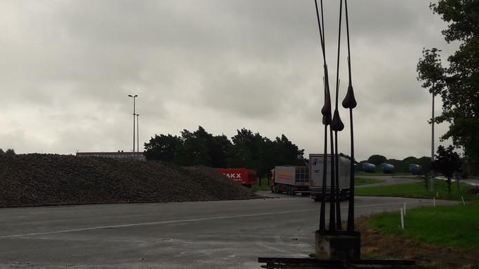 De bietengors waar dag in dag uit vele vrachtwagens de suikerbieten komen lossen.