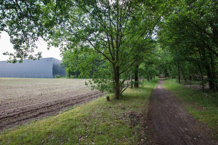 De plek waar het Helmondse industrieterrein BZOB overgaat in bos.