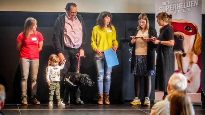 """Tien blindengeleidehonden studeren af met grote onderscheiding: """"Dankzij Raf geraak ik vlot de trap op"""""""