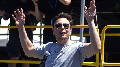 Elon Musk verkoopt nu ook surfplanken van Tesla (en ze zijn direct uitverkocht)