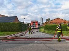 Brand in bijgebouw van varkensstal in Baarle-Nassau, varkens niet gewond