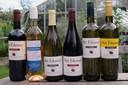 De wijnen van Het Eikenvat.