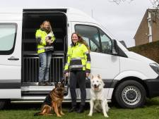 Nieuwe dierenambulance Hof van Twente kan bijna de weg op: 'We zijn onze donateurs erg dankbaar!'