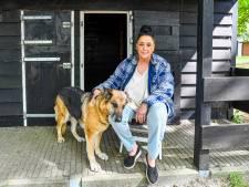 Dierenopvang overvol met dieren van overleden baasjes: '46 honden en 70 katten'