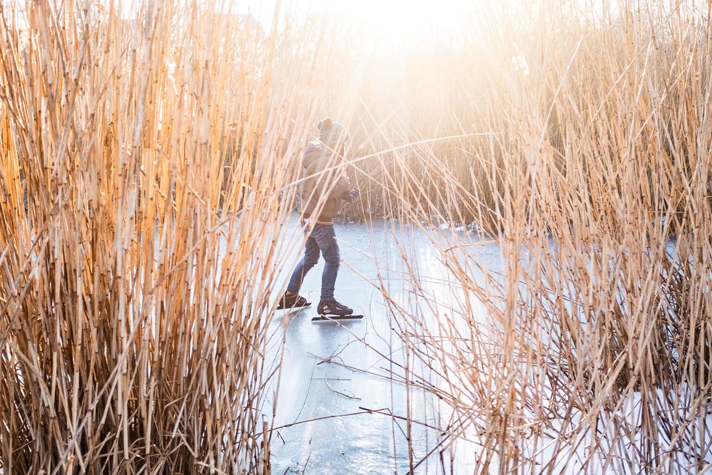 Schaatsers in het Vondelpark genieten vrijdag van een koude maar zonnige dag.  Beeld Joris van Gennip