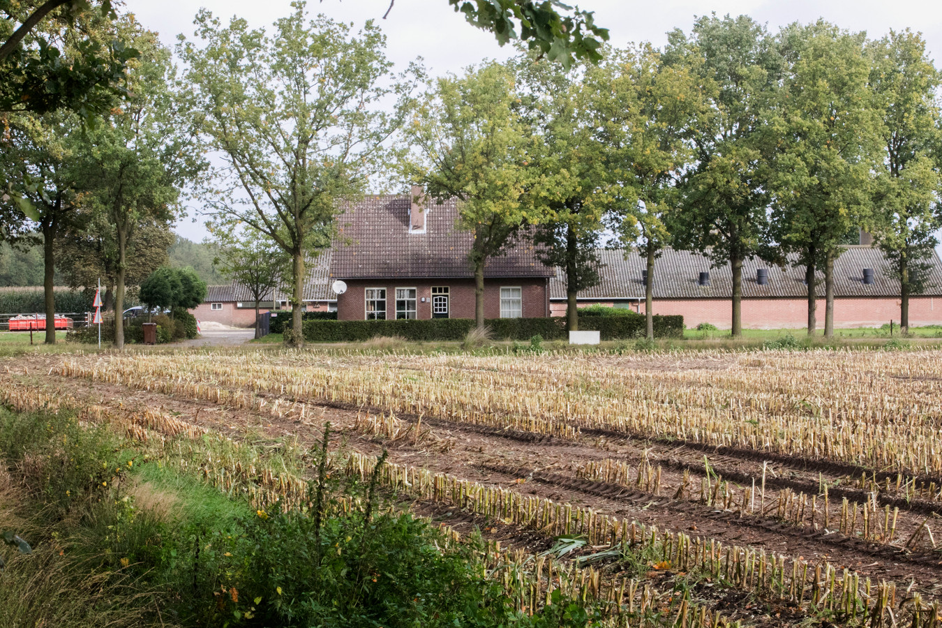 De huidige situatie aan de Logtsebaan 2 in Spoordonk. Op deze plek wil de Boxtelse ondernemer Johan van Hal een varkenshouderij starten.