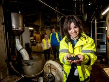 Directeuren Daly Plastics in Zutphen hebben buikpijn van vervuiling met plastic korrels: 'Wij zaten ineens in een nachtmerrie'