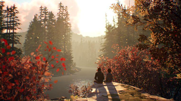 Het binnenkort verwachte 'Life Is Strange 2': een van de weinig overblijvende games met een strak verhaal. Beeld Square Enix