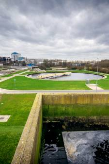 Sponsjes in Nijmeegse sloten om watervervuiling door medicijnen te voorspellen