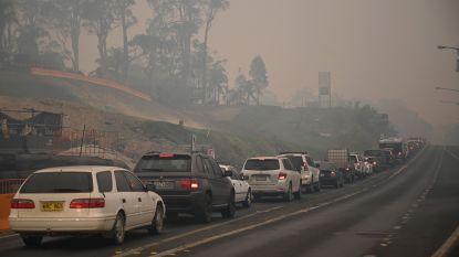 Australische bosbranden: het ergste moet nog komen