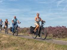 Fietsendief aast nu vooral op e-bike; vooral in deze gemeenten is je elektrische ros niet veilig