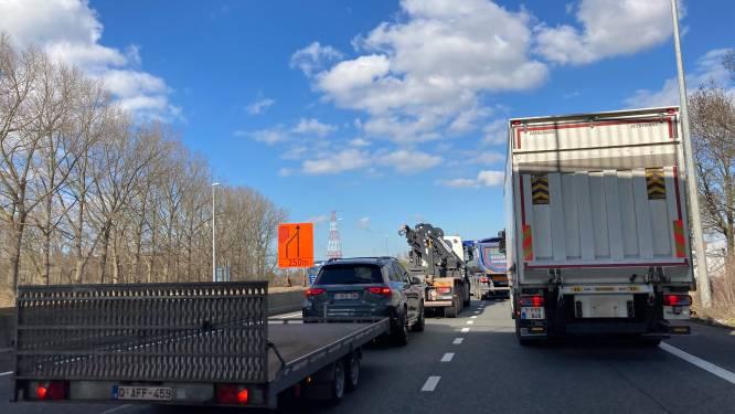 Alsof er nog niet genoeg verkeersellende is, nu ook werken aan verkeerslichten van Gulden-Vlieslaan