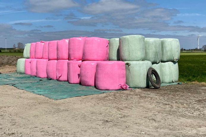 Grasbalen in roze plastic