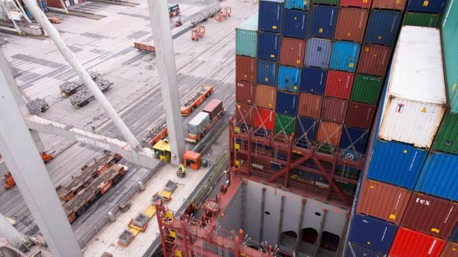 Nederlandse douane vindt cocaïne in container vol vleermuizenpoep