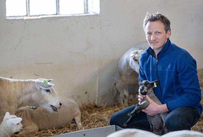 Bart Kemp met een paar van zijn schapen.
