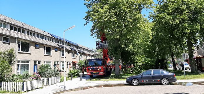 Woningbrand in Terneuzen.