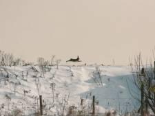 Natuureiland Tiengemeten blijft nog even afgesloten: 'Hopen dat we na 2 maart positiever nieuws hebben'