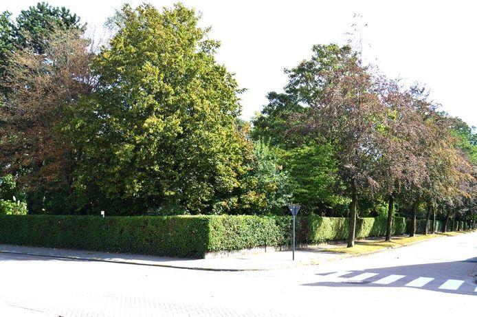 Het parkje op de hoek van de Weststraat en Sanderuslaan in Sleidinge.