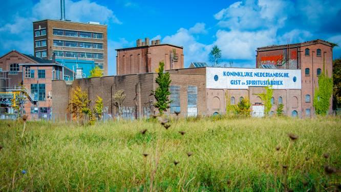 Leegstaand industrieel monument Taplokaal is gedroomde locatie voor Museum Van Marken