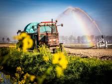 'Extreem grillig weer' zit Dordtse boeren in de weg: 'We lopen nu tegen beperking van inpolderen aan'