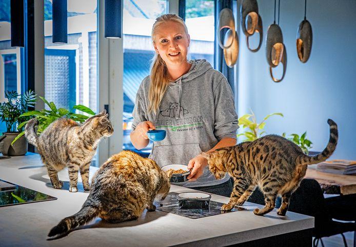 Kattenverzorgster aan huis