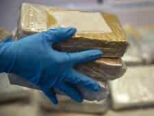 Douane onderschept 375.000 euro aan cocaïne in de haven van IJmuiden