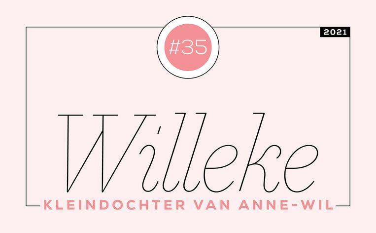 Willeke #35 Beeld Libelle