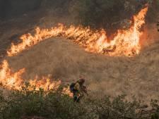 L'administration Trump bloque l'aide aux victimes des incendies de forêt en Californie