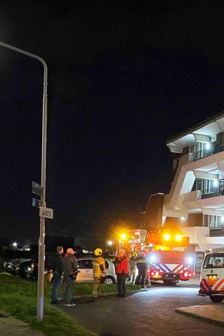 Flikkerende lamp lijkt op brand: brandweer in allerijl naar Huys de Merwede in Papendrecht