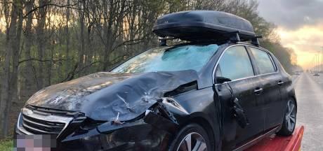 Drame sur l'E40: un jeune homme perd la vie percuté par une voiture après être tombé en panne