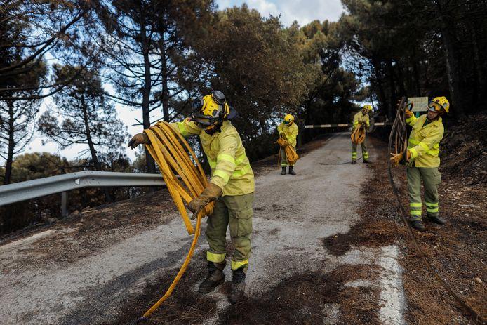 Brandweermannen rollen hun brandweerslangen op in Sierra Bermeja, Estepona, Spanje.