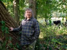 Wandelroute door 'oerbos' al in de maak: 'Maar wel rekening houden met privacy van omwonenden'