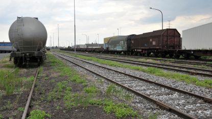 """Heel Gentse kanaalzone wil personenvervoer per spoor tussen Gent en Zelzate, alleen Infrabel twijfelt: """"Essentiële schakel in de mobiliteit van deze regio"""""""