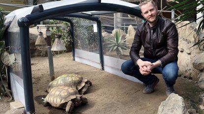 Nieuwe start voor Olmense Zoo: vernieuwde dierenverblijven, meer educatieve beleving