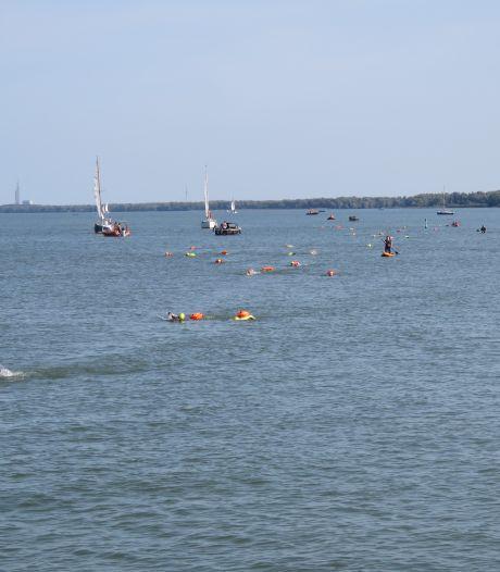 Hollandsdiep Zwemtocht zit vol, organisatie zoekt  naar meer bootjes: 'Iedereen duikt er bovenop'