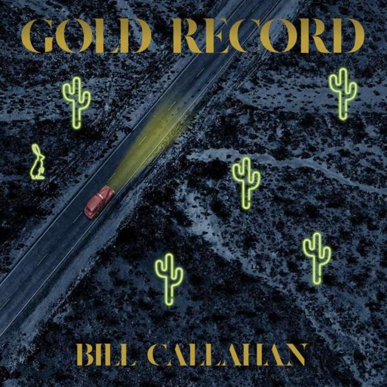 Gold Records - Bill Callahan Beeld rv